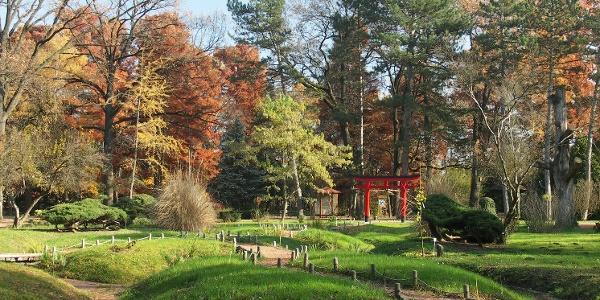 A szegedi Füvészkert Japánkertje