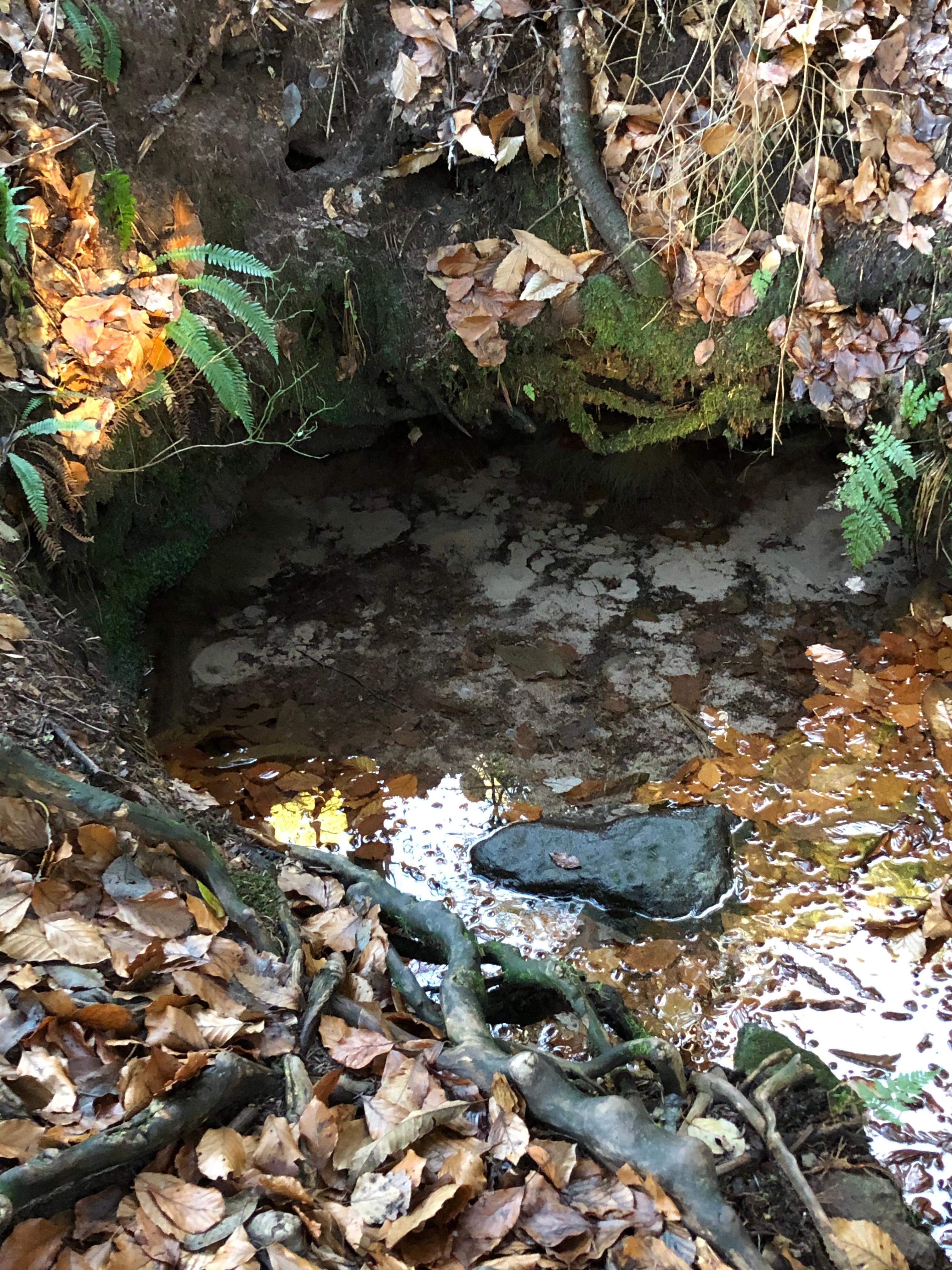 Sprudelnde Quelle