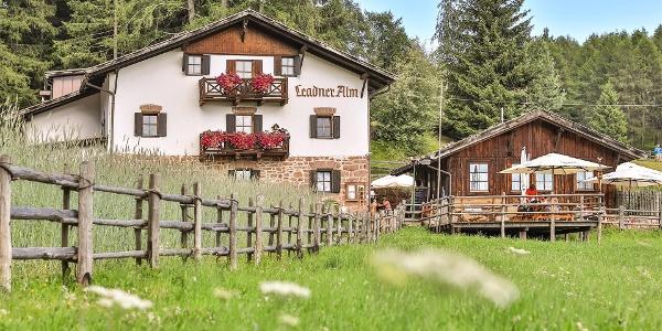 Die Leadner Alm in Vöran, Südtirol