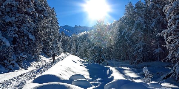 Ein Wintertraum im Val S-charl.