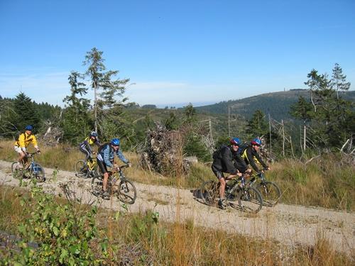 Höhenluft - Mountainbiketour im Forbacher Höhengebiet