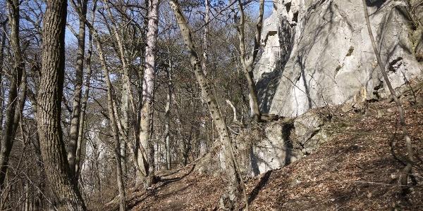 An den Felsen der Badener Kletterschule vorbei geht es höher