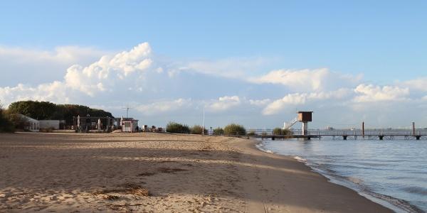 Strand Elbinsel Krautsand