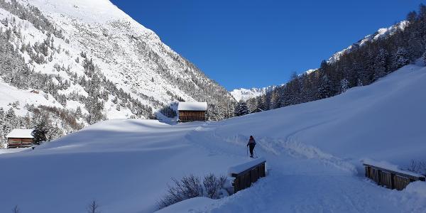 Aufstieg - anfangs gespurter Forst-/Wanderweg