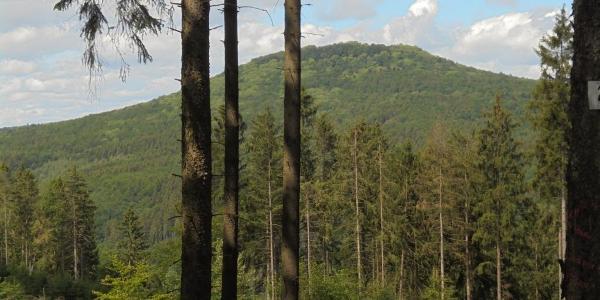 Von hier (1) hat man einen tollen Blick auf den Aremberg