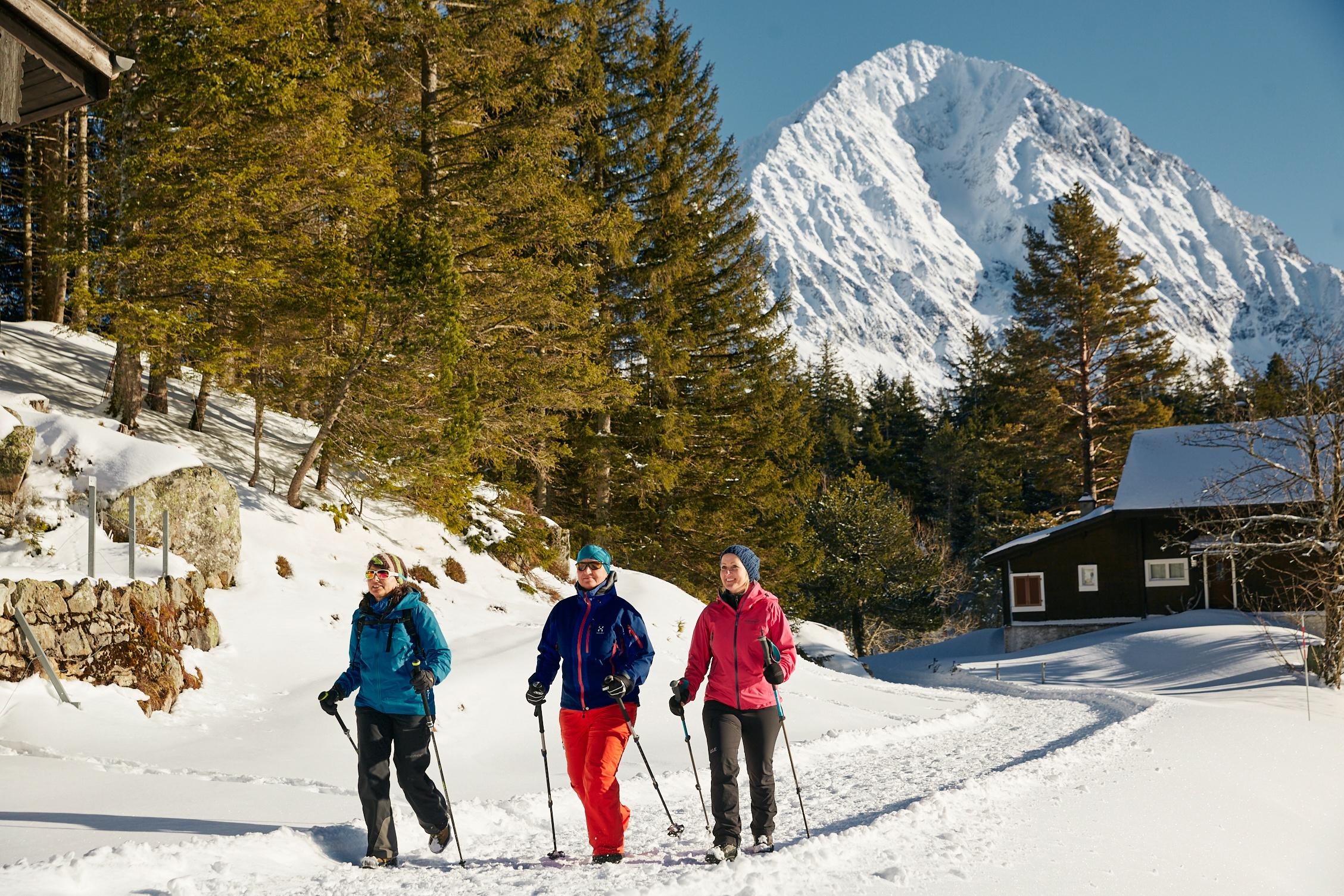 Winterwandern Arni