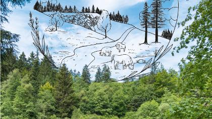 Auf ins WaldReich - Das Outdoor-Magazin für Siegen-Wittgenstein