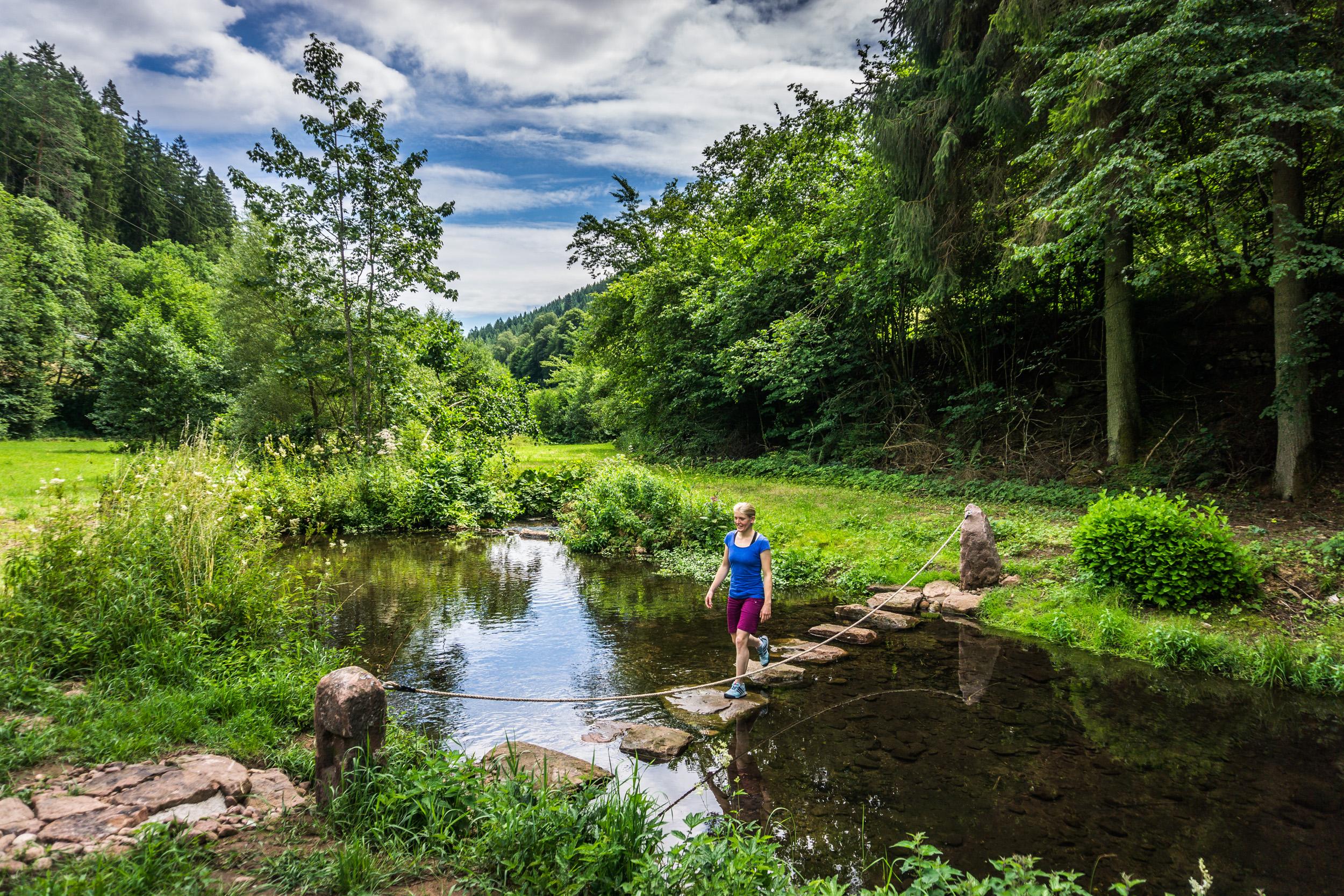 Über Trittstufen gelangt der Wanderer trockenen Fußes über die Teinach