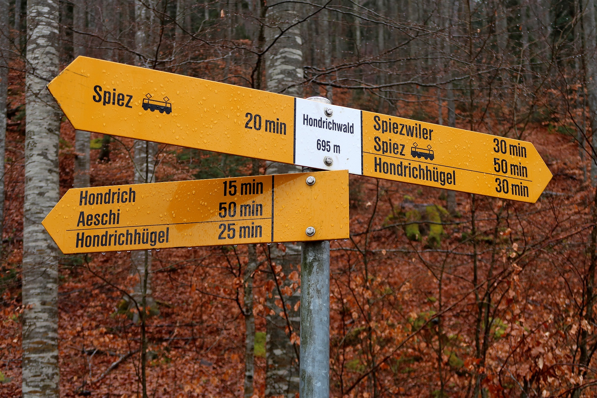 Wegweiser Hondrichwald.