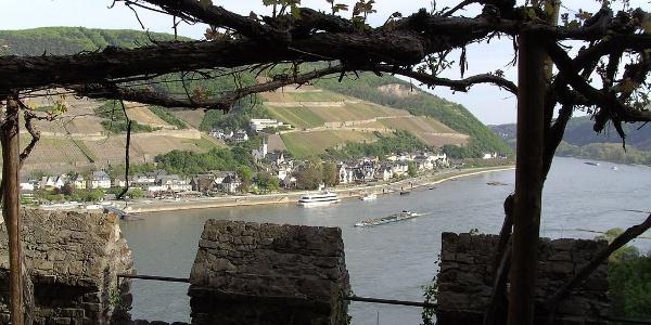 Ausblick von Burg Rheinstein