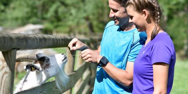Beim Ziegenfüttern im Naturschutzzentrum Weitental