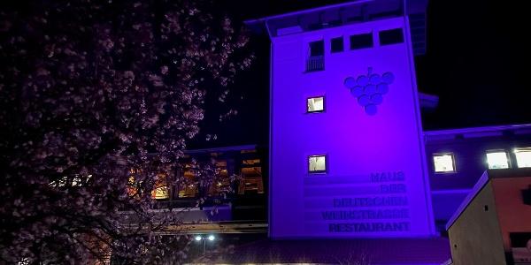 Rosa Leuchten - Haus der Deutschen Weinstraße