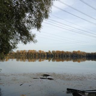Bodensee (der kleine Bruder des bekannten :-))