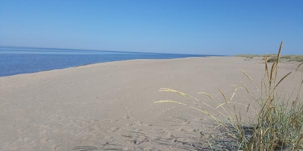 Vattajan hiekkaranta