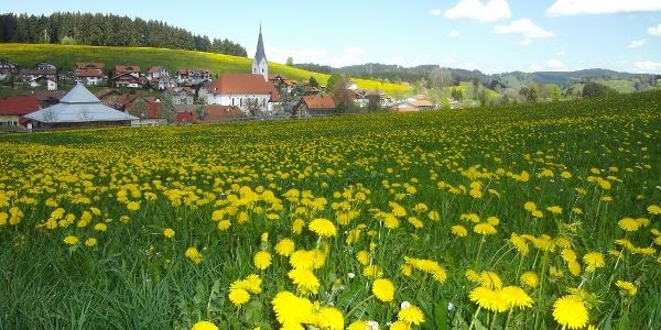Stiefenhofen im Westallgäu