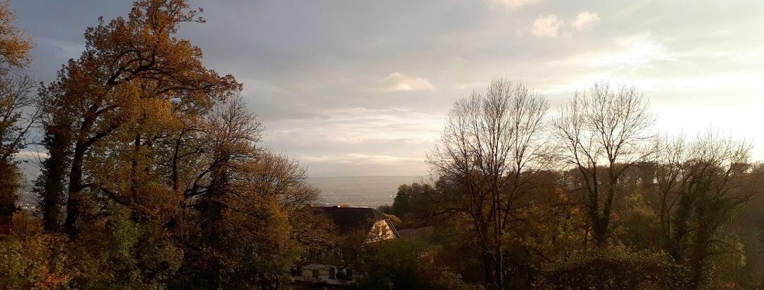 Ausblick vom Schloss Monrepos