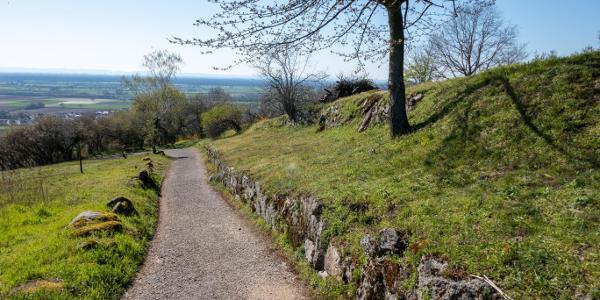 Natursteinmauern und weite Aussichten