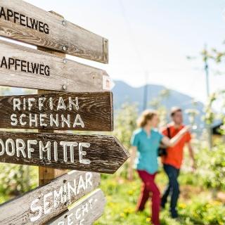 Escursione da Tirolo a Scena
