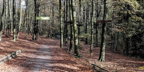 Der Weg führt durch den Kletterwald hindurch