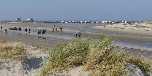 Dünen und Strand gehen an manchen Stellen in Wattflächen über.
