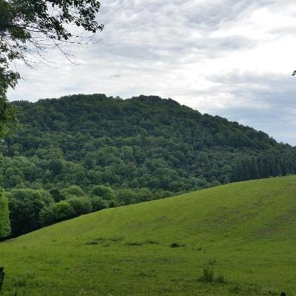 Blick auf den Burberg Schutz