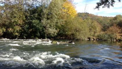 Flußlandschaft Amperleiten