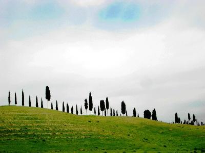 typische Toscana