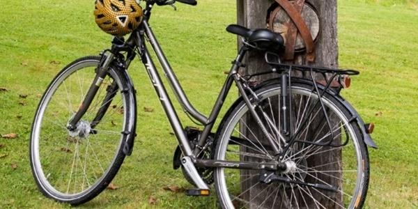 Fahrrad in der Region
