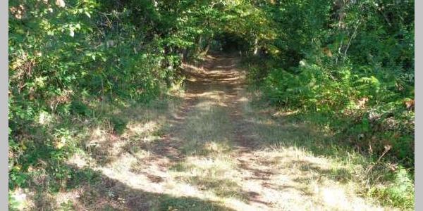 Circuit n°4 : GR de Pays du Midi Corrézien - Boucle de Lostanges