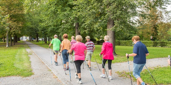 Nordic Walken im Naturpark Pöllauer Tal