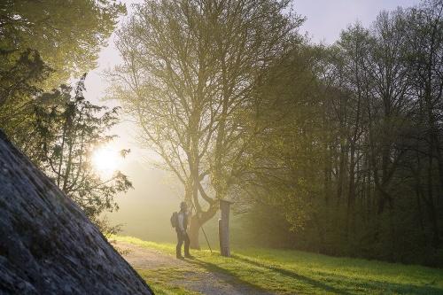 10. Waldrouten-Etappe Kallenhardt - Bibertal
