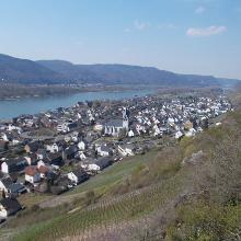 Blick auf Leutesdorf