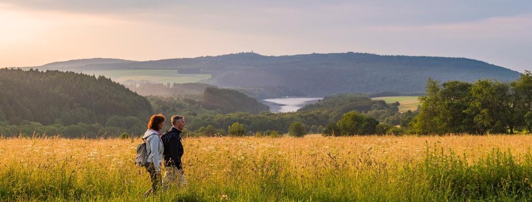 Wiesenpfad mit Blick zur Steinbachtalsperre