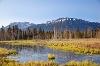 Blick auf den Breitenberg auf dem Pfrontener Moorpfad - @ Autor: Julian Knacker - © Quelle: Pfronten Tourismus