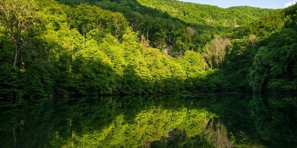 Az újszülött Szalajka-patak duzzasztott tükrébe tekintő Istállós-kő bükköse