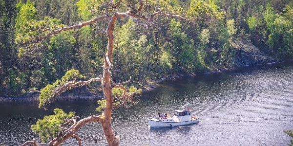 Eine geführte Bootsfahrt zu den Felsmalereien von Astuvansalmi beginnt in Kallioniemi