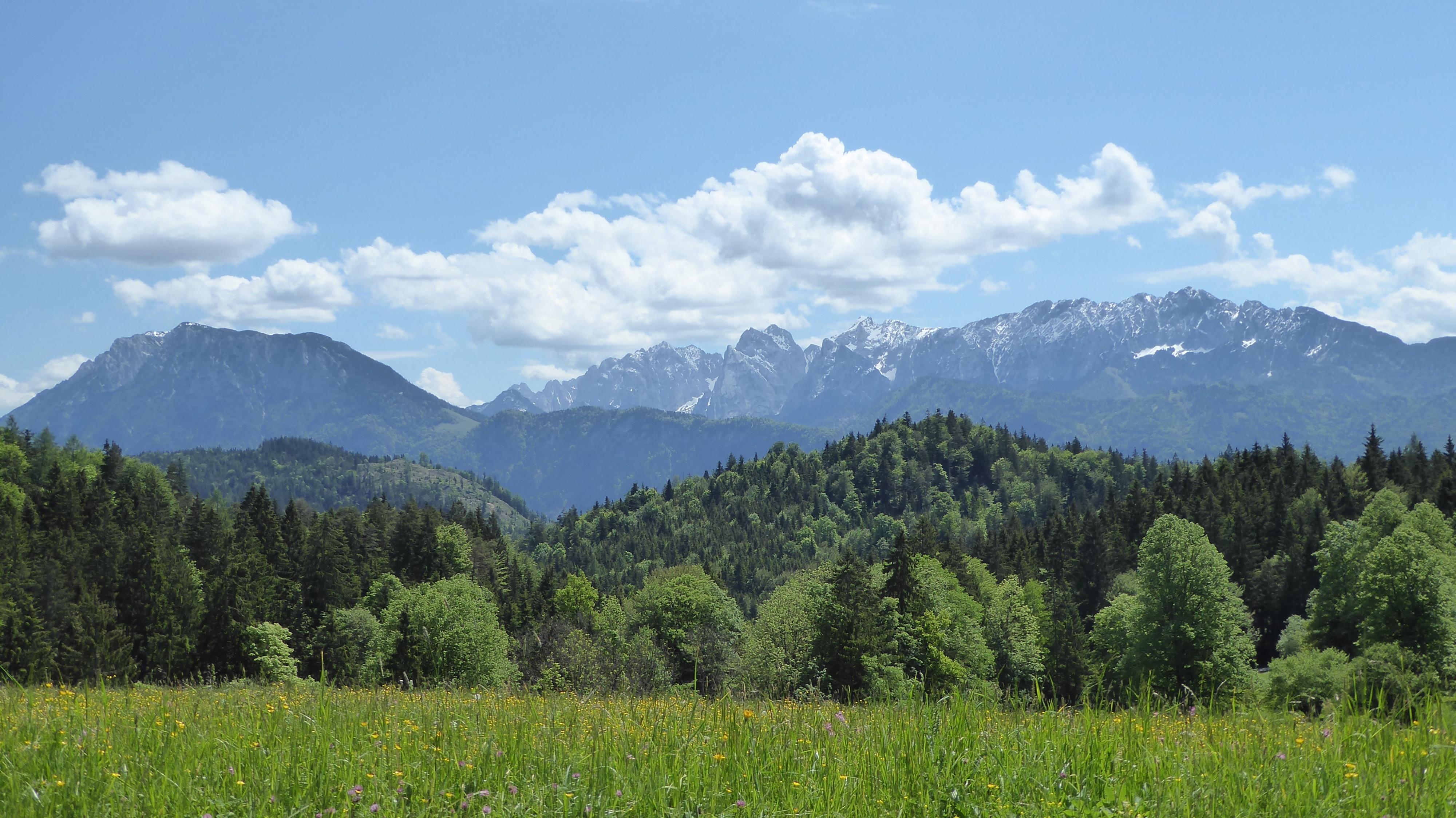 Schwarzenberg Wildgrub