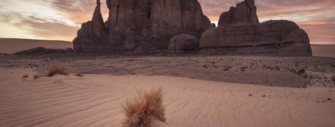 Desert landscape in Algeria