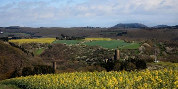 Blick auf die beiden Monreal Burgen