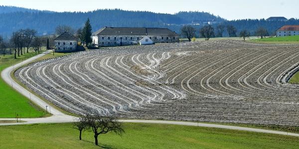 Blick vom Ellerberg zum Bauernhof