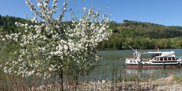 Start an der Donau
