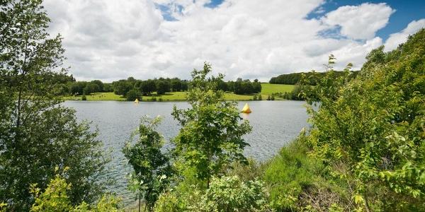 Naherholungsgebiet Freilinger See