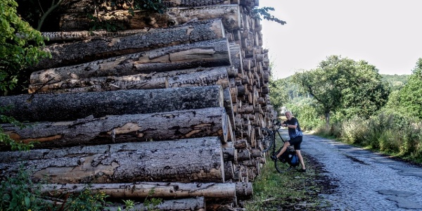 Harz-Rundweg 5. Etappe - Holzpolter