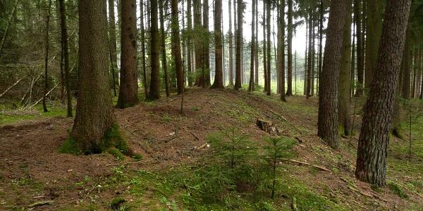 Schleifenroute - Keltische Viereckschanze bei Möckenlohe