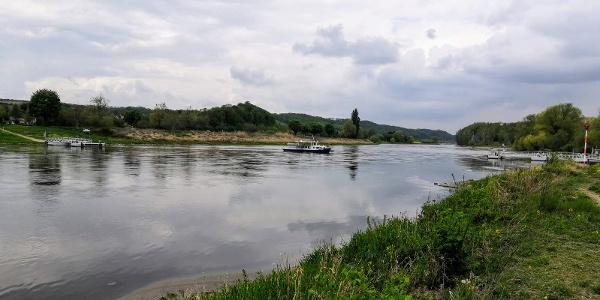 Elbfähre (Querfahrt) Coswig - Kötitz/ Gauernitz