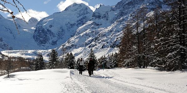 Winter hiking trail to the Morteratsch glacier