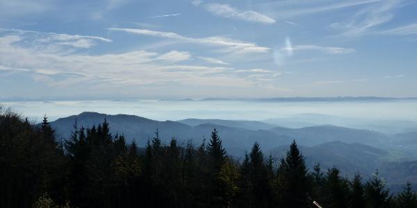 Ausblick nach Süden vom Hochblauen