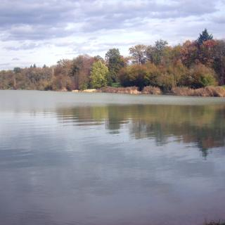 Südende Opfinger See (Panorama-Montage)