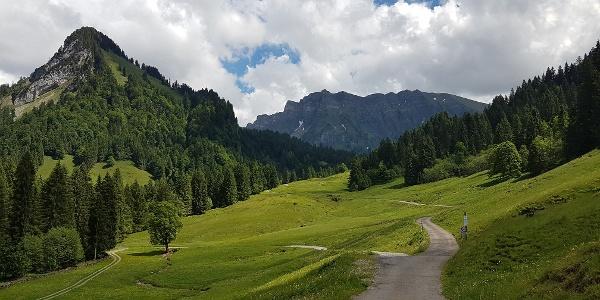 Wanderweg in Schönenbach