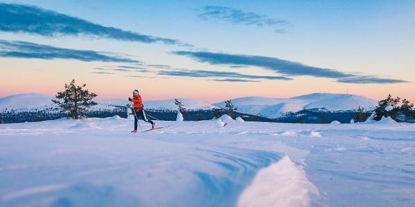 Kukastunturin hiihto nousee ylös avotunturiin, josta on hienot maisemat ympäröiville tuntureille, Pallas-Yllästunturin kansallispuisto